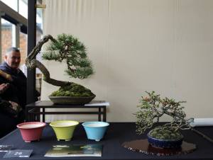 Steve McKee's Best Tress and Pot combination (with the artist lurking in the background)